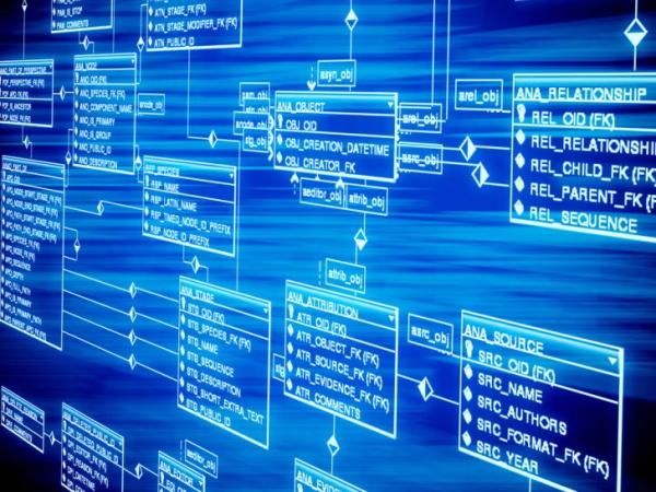 Роскомнадзор иФСБ хотят хранить вбазах никнеймы пользователей