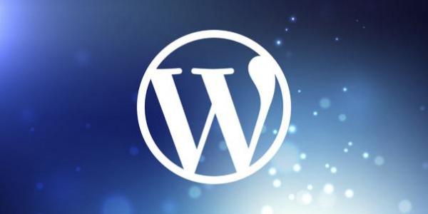 Израильская полиция проверяла лояльность WordPress с помощью поддельного блога